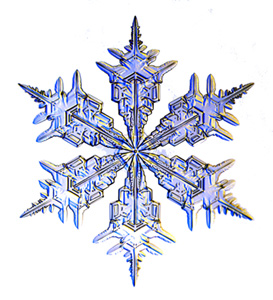 snowflake_300h